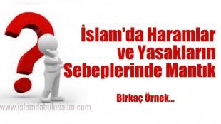 İslam'da Haramlar ve Yasakların Sebeplerinde Mantık